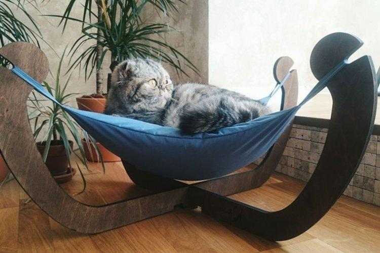 A Cat Bed With Your Own Hands: 11 Simple Ideas